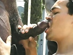 Two musclebound black studs are serviced by their landlord out